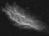 California-Nebula